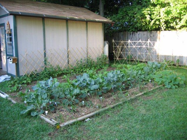 garden_042504.jpg